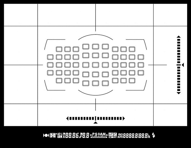 Grille dans le viseur d'un appareil nikon